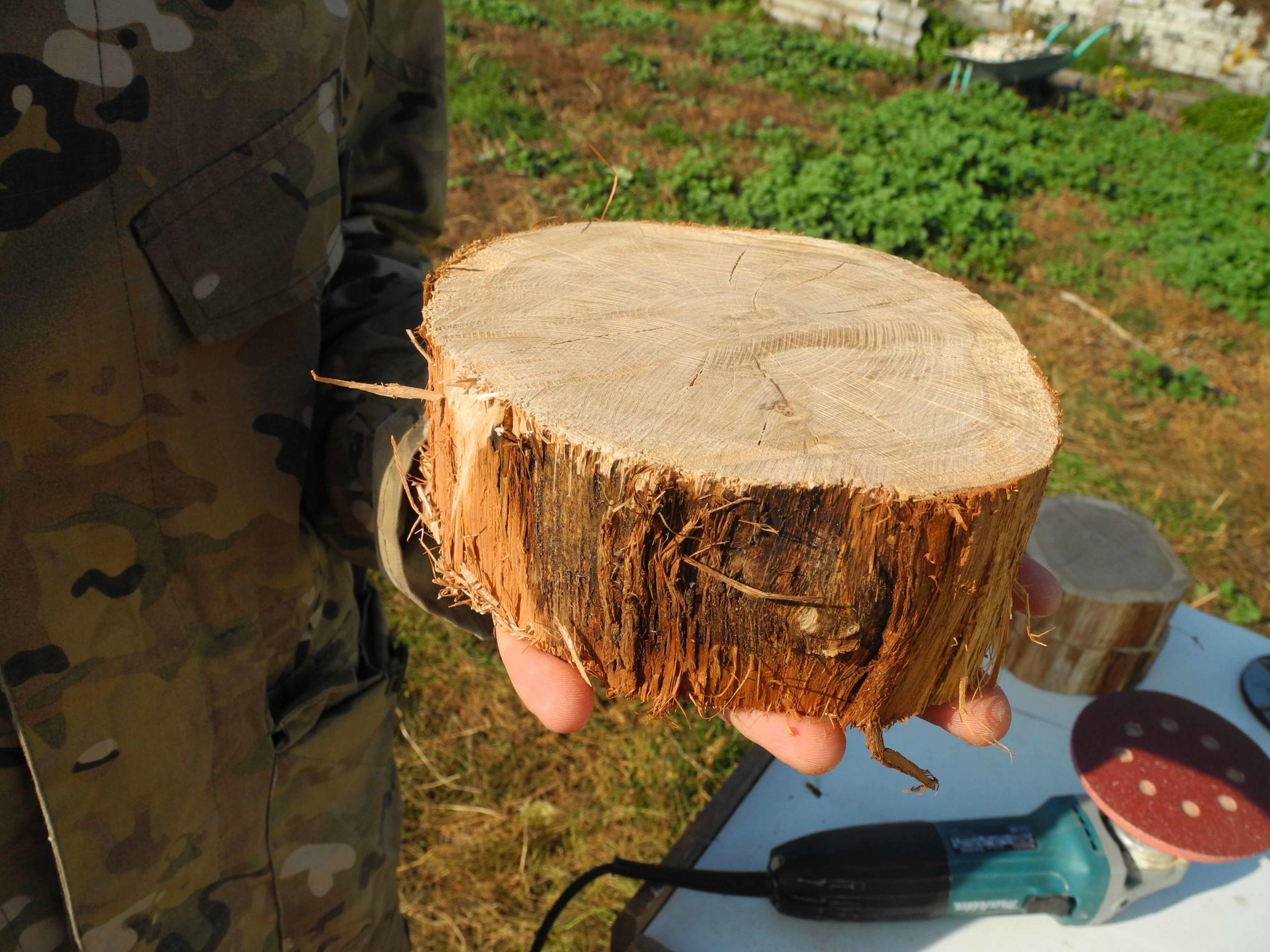 Деревянный спил для декора заготовка