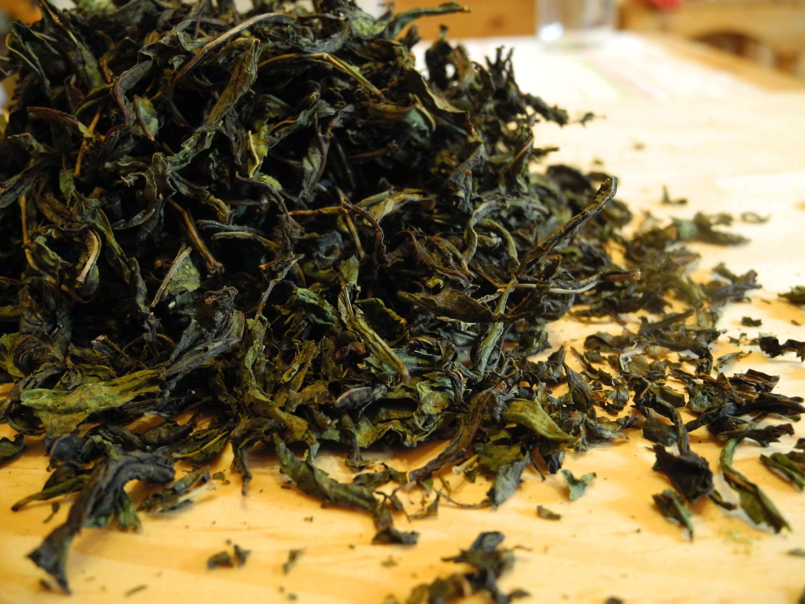 Иван-чай черный