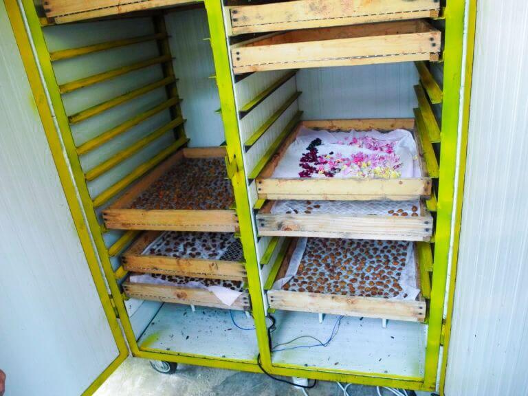 Шкаф для сушки сухофруктов