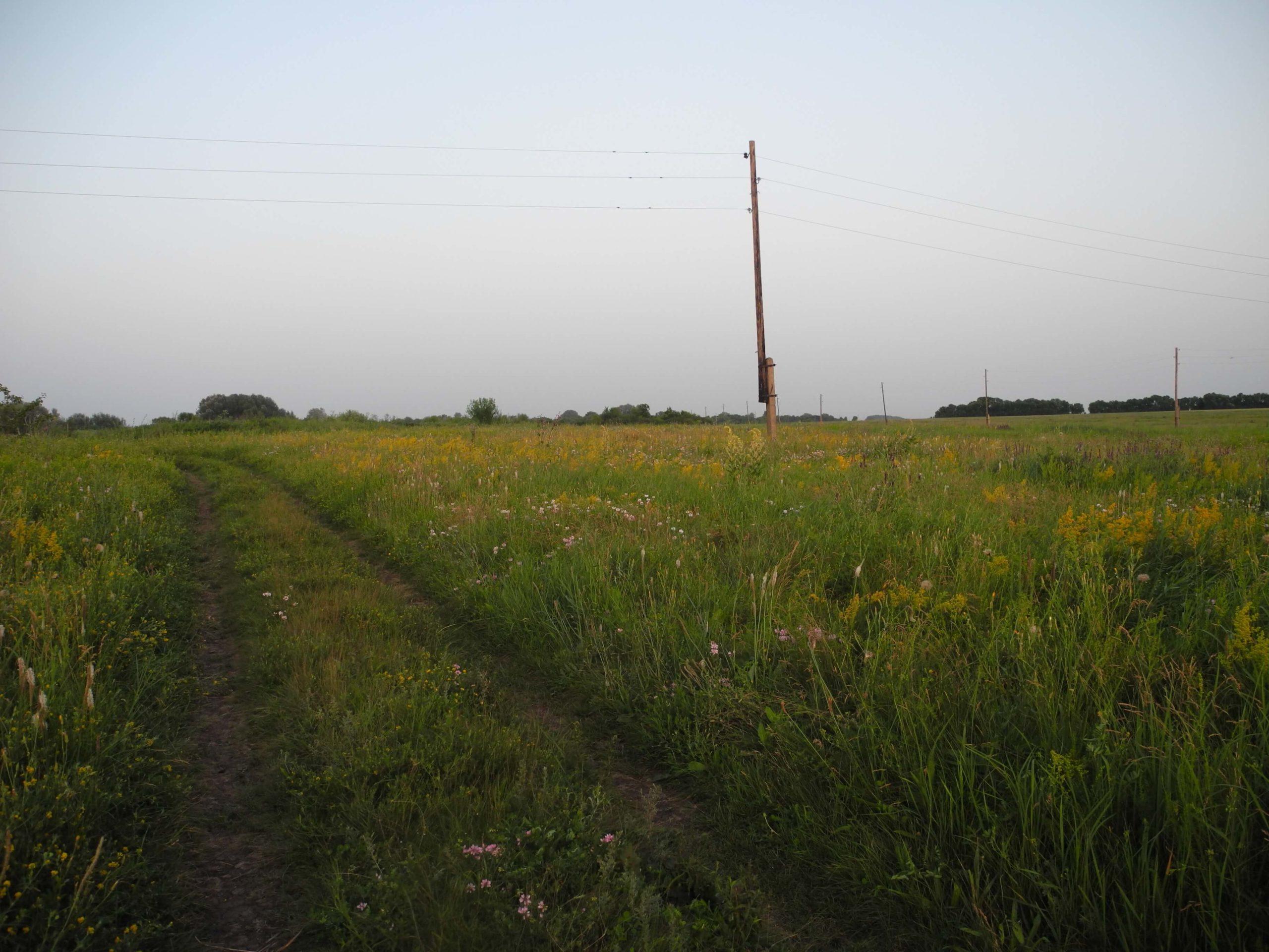 Аренда земельного участка находящегося в муниципальной собственности