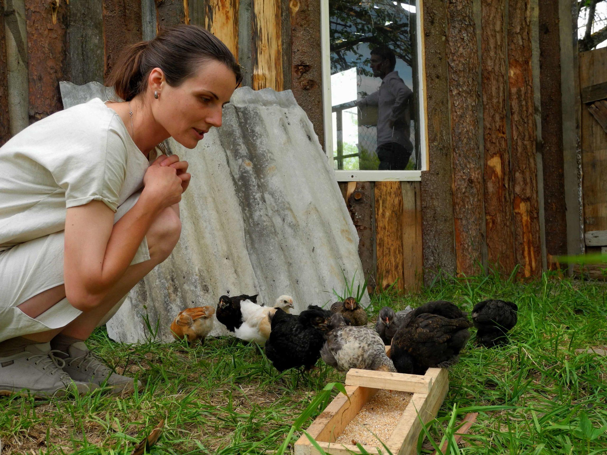 Навык ветеринара в деревне