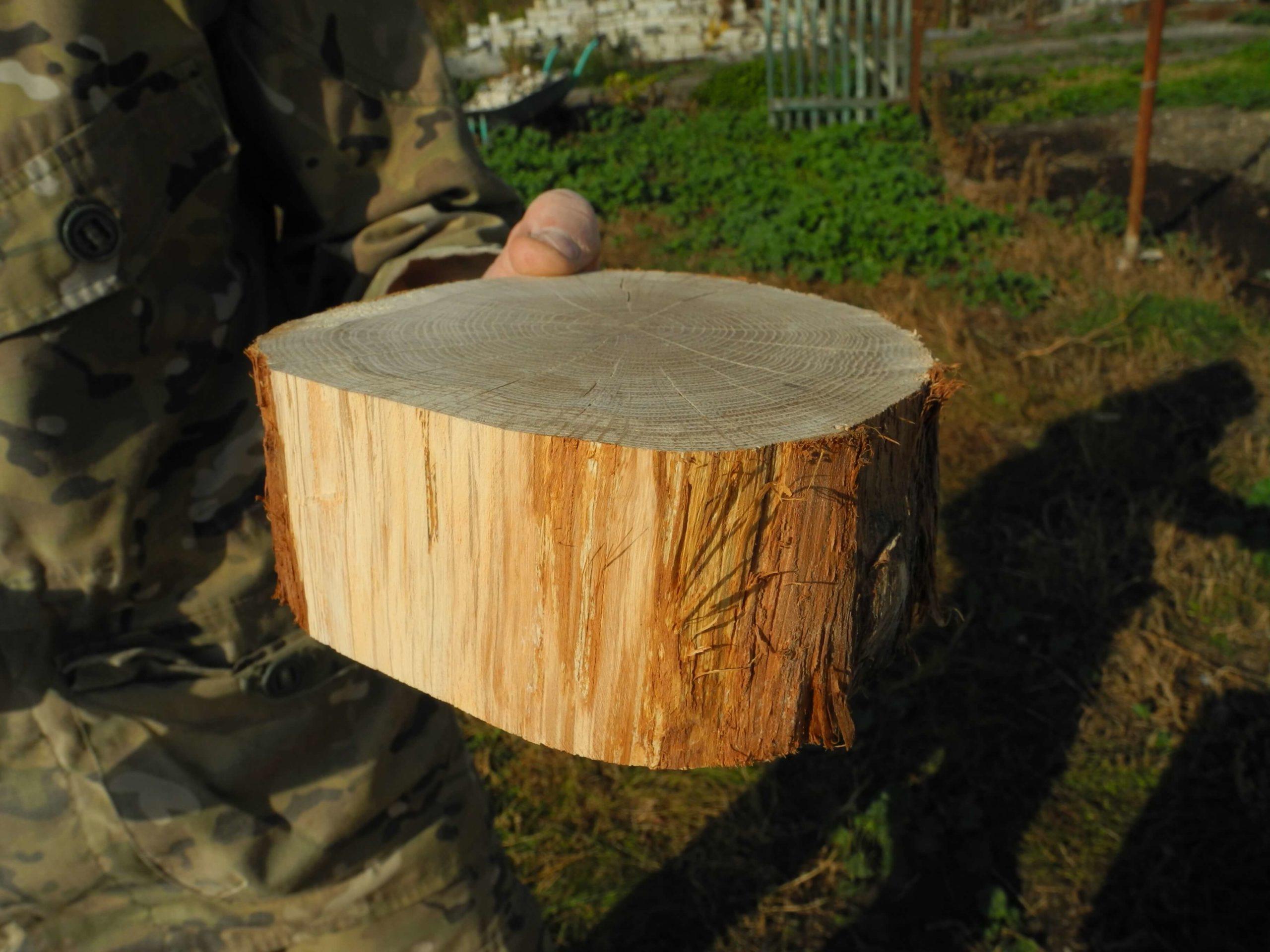 Деревянный спил для декора