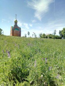 Храм в хуторе Скворцовском