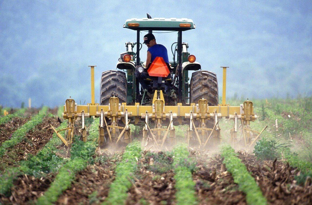 Интенсивное сельское хозяйство